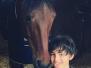 la-scuola-di-equitazione
